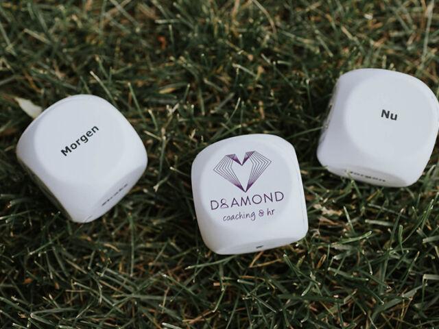 Diamond Coaching & HR - Kim Peeters - Waasland Temse